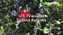 ŠkolaNews - letná filmová akadémia (27.11.2013)